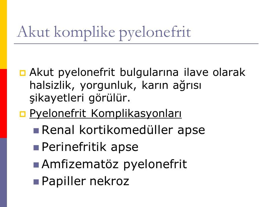 Akut komplike pyelonefrit  Akut pyelonefrit bulgularına ilave olarak halsizlik, yorgunluk, karın ağrısı şikayetleri görülür.