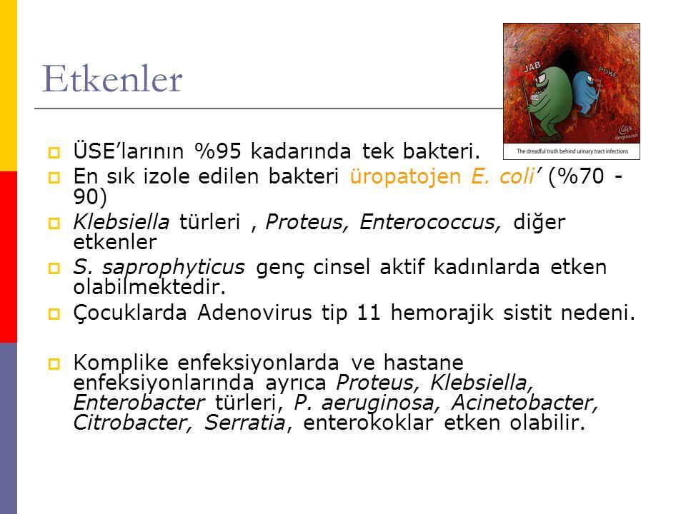  Laktobasiller, difteroidler, anaerop bakteriler, S.