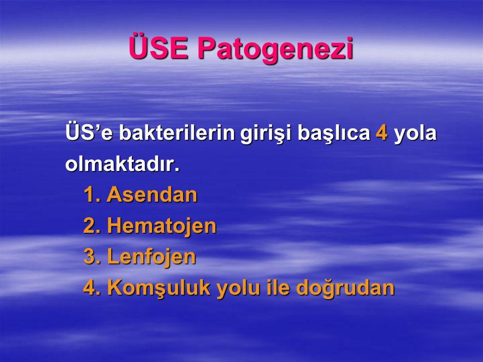 ÜSE Patogenezi ÜS'e bakterilerin girişi başlıca 4 yola ÜS'e bakterilerin girişi başlıca 4 yola olmaktadır. olmaktadır. 1. Asendan 1. Asendan 2. Hemato