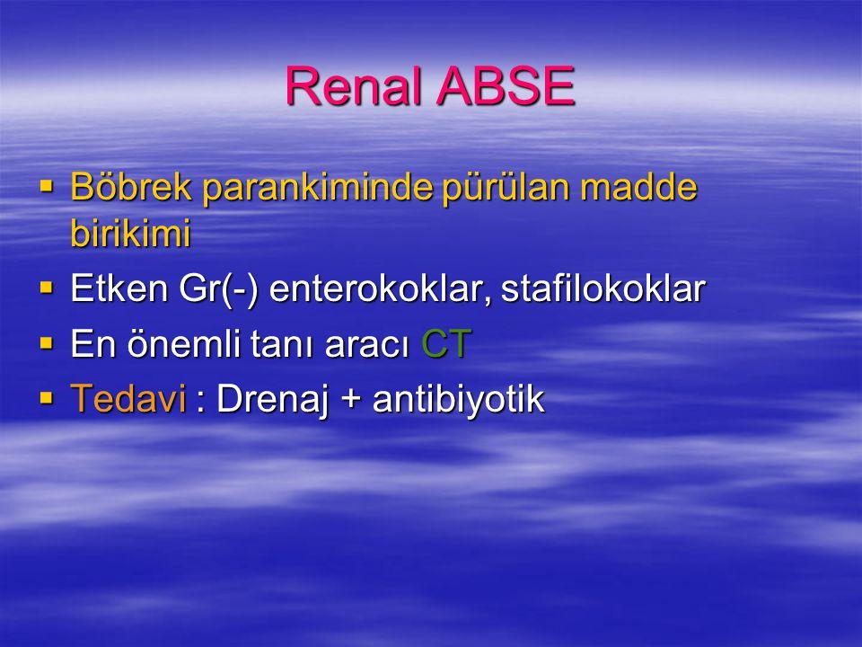 Renal ABSE  Böbrek parankiminde pürülan madde birikimi  Etken Gr(-) enterokoklar, stafilokoklar  En önemli tanı aracı CT  Tedavi : Drenaj + antibi