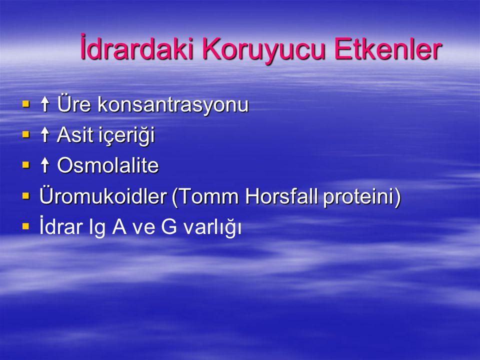 İdrardaki Koruyucu Etkenler   Üre konsantrasyonu   Asit içeriği   Osmolalite  Üromukoidler (Tomm Horsfall proteini)   İdrar Ig A ve G varlığı