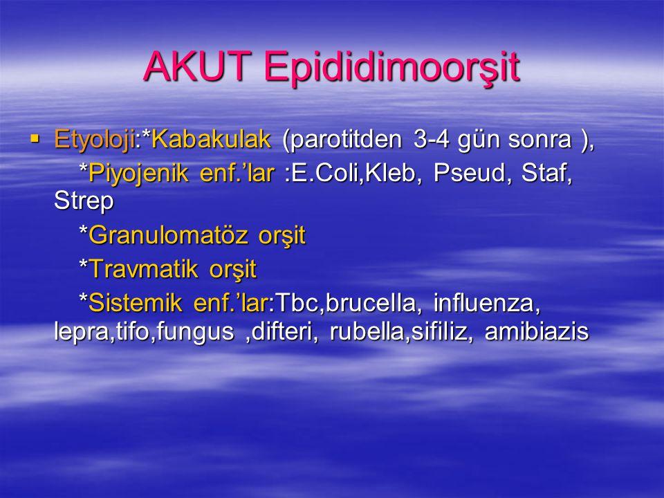 AKUT Epididimoorşit  Etyoloji:*Kabakulak (parotitden 3-4 gün sonra ), *Piyojenik enf.'lar :E.Coli,Kleb, Pseud, Staf, Strep *Piyojenik enf.'lar :E.Col