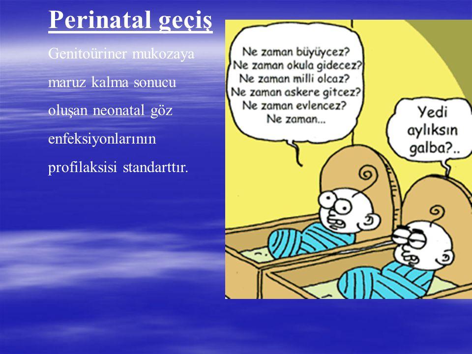 Perinatal geçiş Genitoüriner mukozaya maruz kalma sonucu oluşan neonatal göz enfeksiyonlarının profilaksisi standarttır.