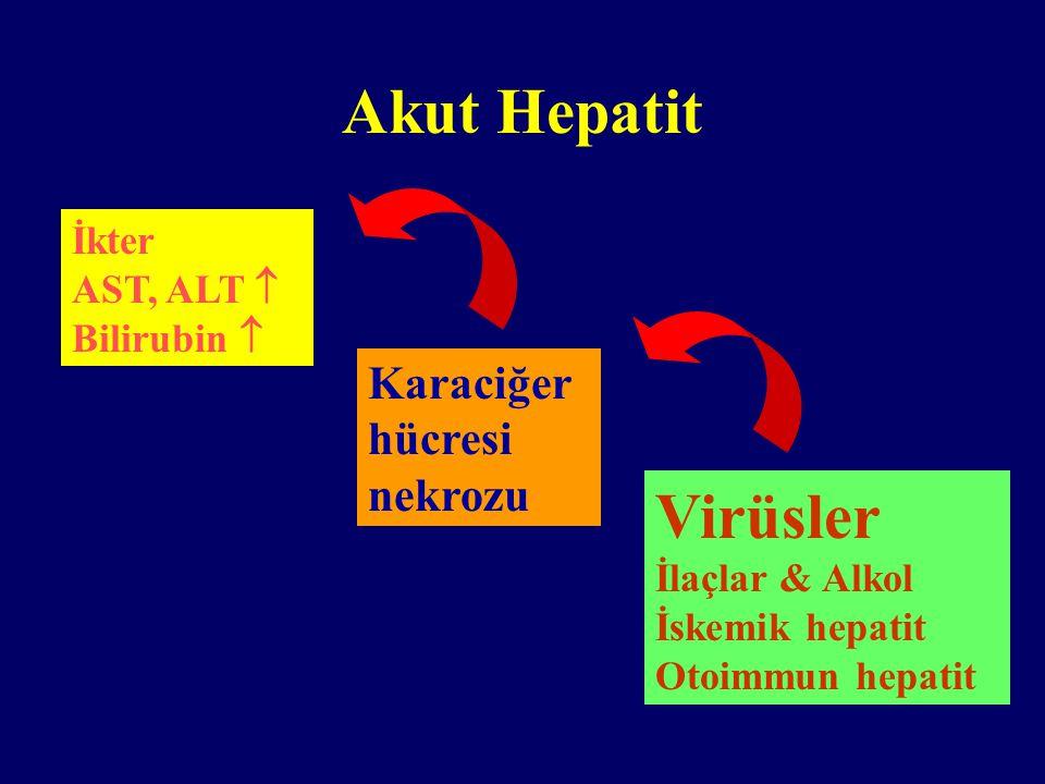 Yakınmasız hastada ALT yüksekliği HBsAg Anti-HCV + - KH açısından ileri tetkik Toksik/Alkolik hepatit Yağlanma Metabolik Karaciğer Has.