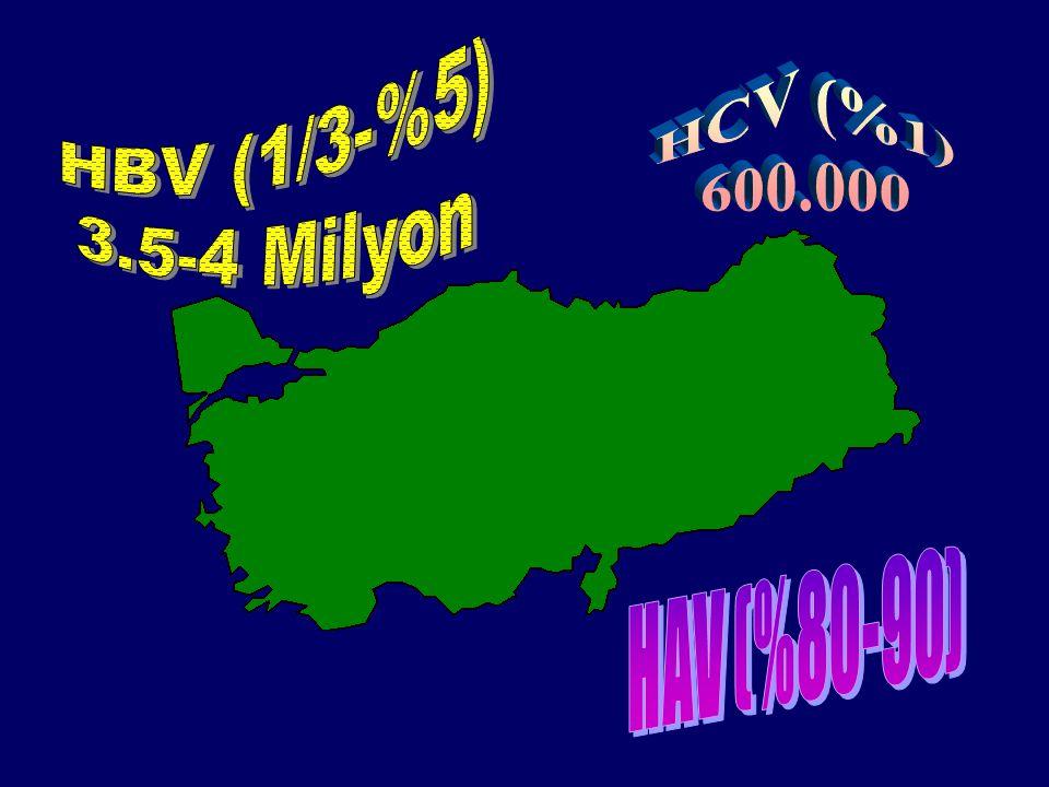HBeAg (-) KHB Türkiye prevalansı Merkez (n)HBeAg +HBeAg- HBeAg- /AntiHBe- Cerrahpaşa (351) %34%66 Samsun (121) %37%60%3 İstanbul Tıp Fak.