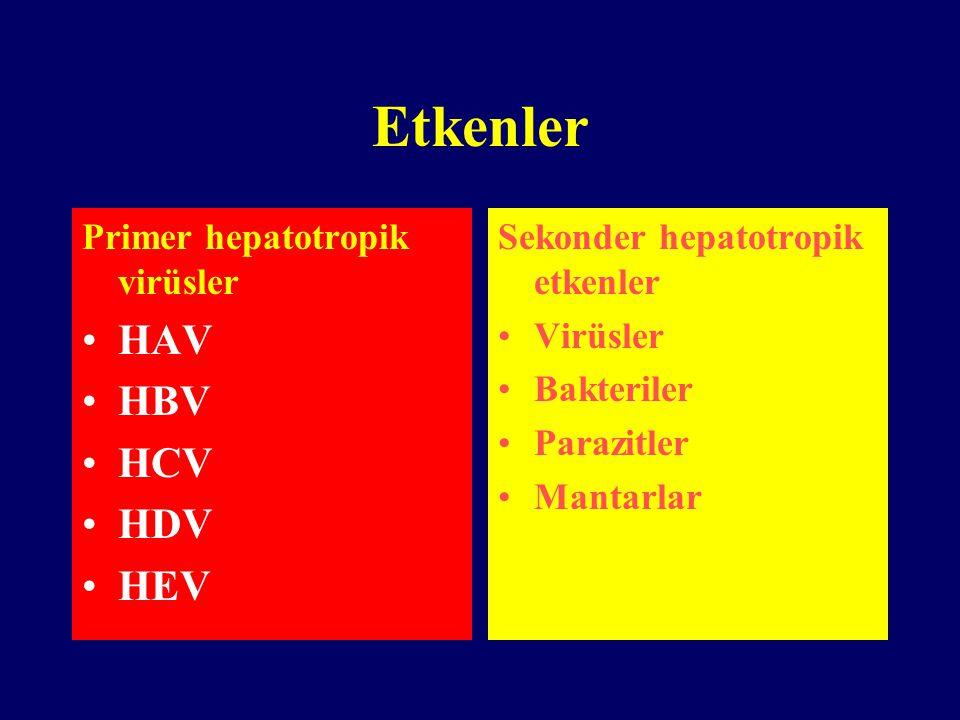 Etkenler Primer hepatotropik virüsler HAV HBV HCV HDV HEV Sekonder hepatotropik etkenler Virüsler Bakteriler Parazitler Mantarlar