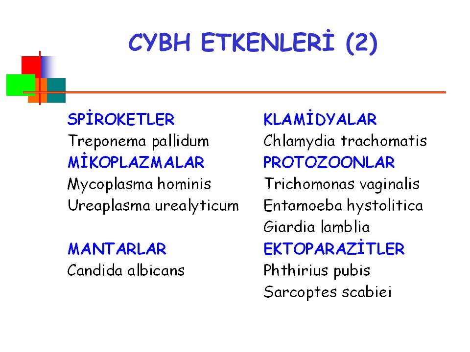 CYBH ETKENLERİ (2)