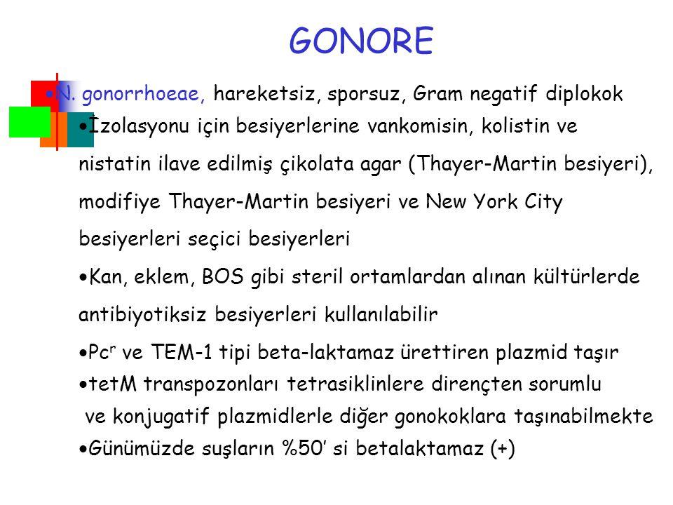 GONORE  N. gonorrhoeae, hareketsiz, sporsuz, Gram negatif diplokok  İzolasyonu için besiyerlerine vankomisin, kolistin ve nistatin ilave edilmiş çik
