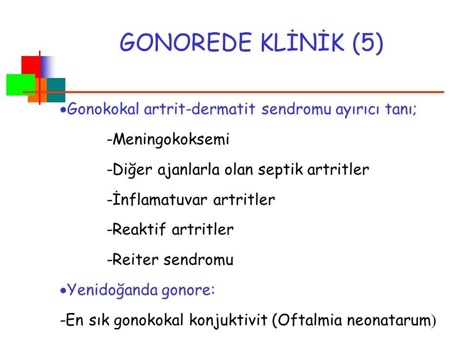GONOREDE KLİNİK (5)  Gonokokal artrit-dermatit sendromu ayırıcı tanı; -Meningokoksemi -Diğer ajanlarla olan septik artritler -İnflamatuvar artritler