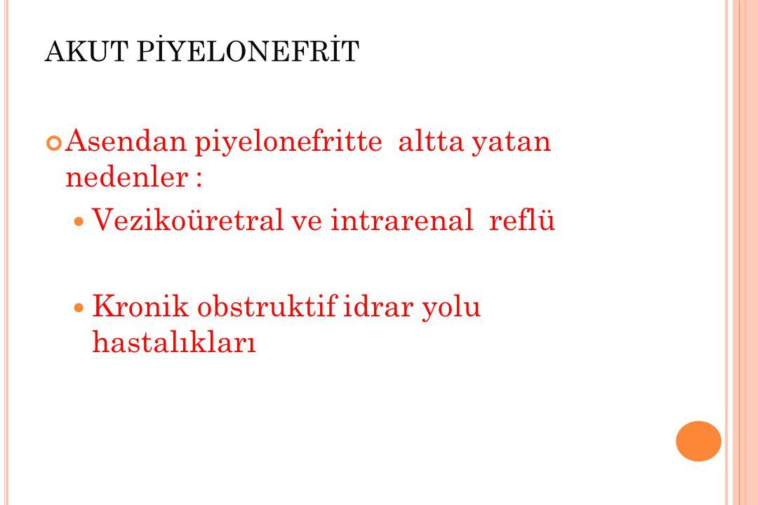 SEFALOSPORİNLER 3.