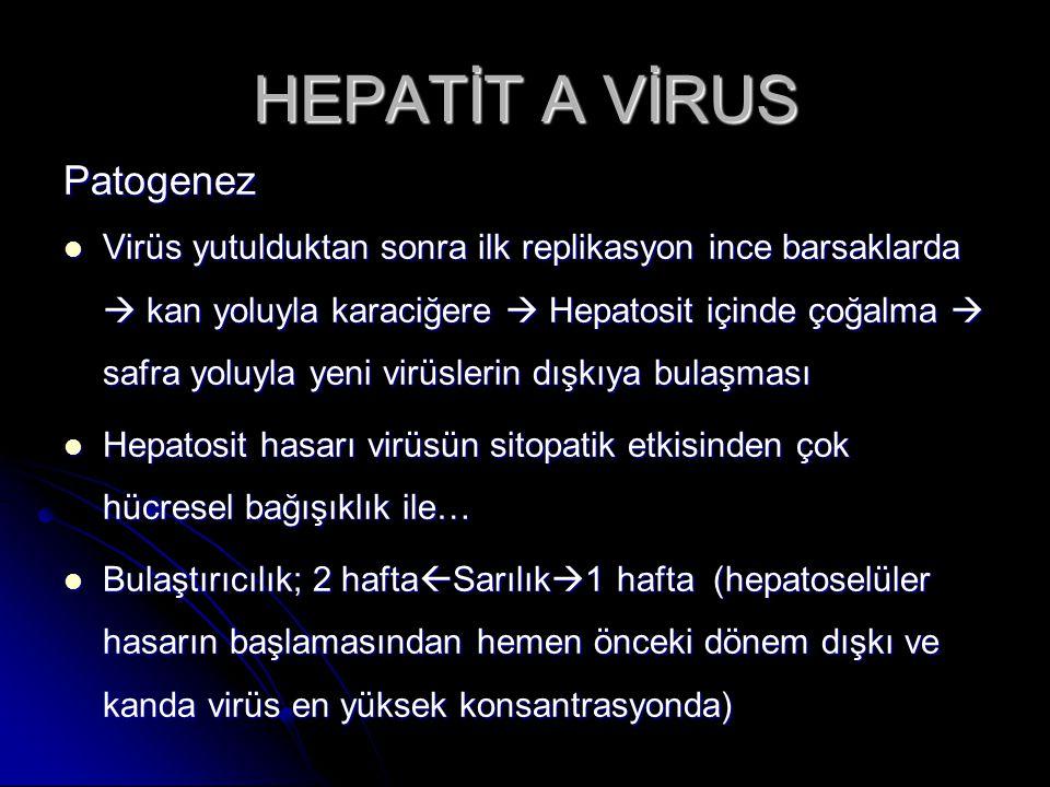 HEPATİT C VİRUS klinik İnkubasyon süresi 7 hafta (1-6 ay) İnkubasyon süresi 7 hafta (1-6 ay) Akut; sıklıkla asemptomatik.