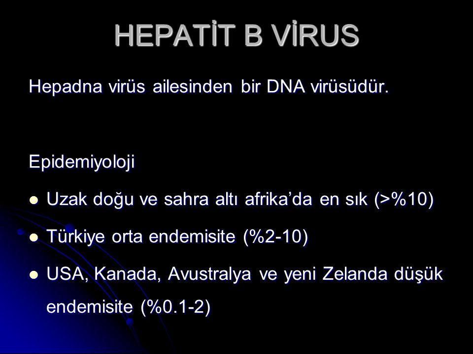 HEPATİT B VİRUS erken yaşta alınması kronikleşme riskini artırır.