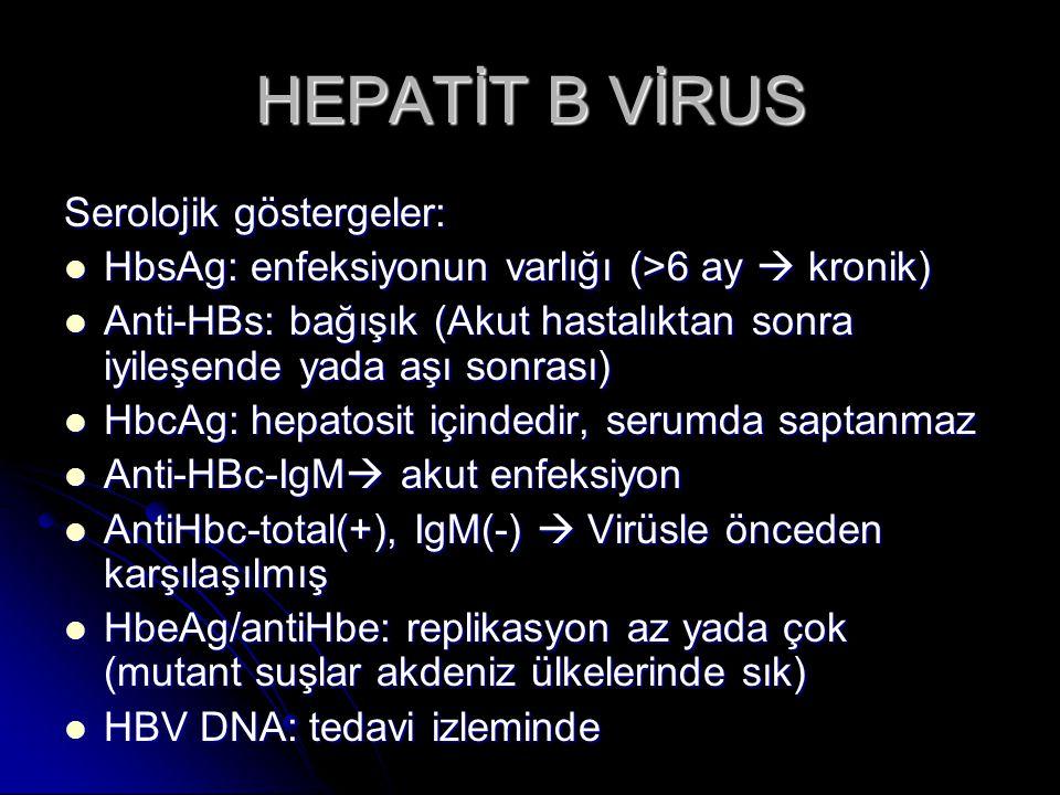HEPATİT B VİRUS Patogenez/ klinik Akut infeksiyon; 1-6 aylık inkubasyon döneminde sonra akut hepatit (immünolojik mekanizmayla) Akut infeksiyon; 1-6 aylık inkubasyon döneminde sonra akut hepatit (immünolojik mekanizmayla) Kronik infeksiyon; sıklıkla hafif yada subklinik ilerler.