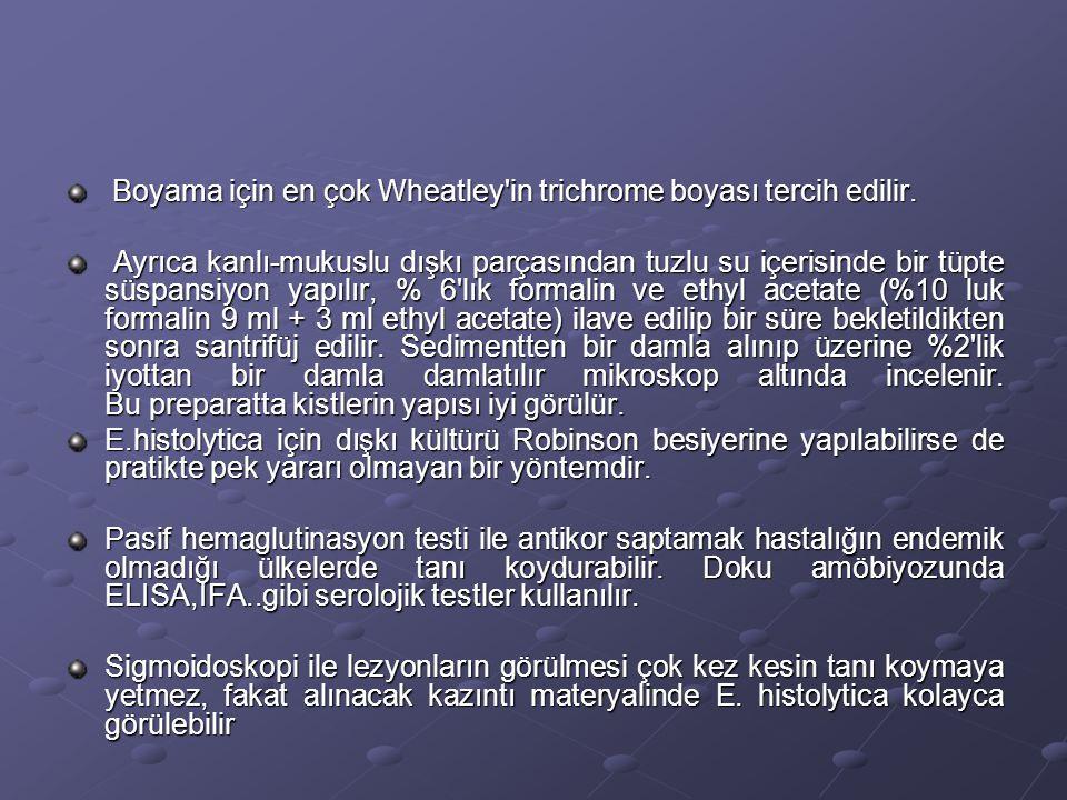 Boyama için en çok Wheatley'in trichrome boyası tercih edilir. Boyama için en çok Wheatley'in trichrome boyası tercih edilir. Ayrıca kanlı-mukuslu dış