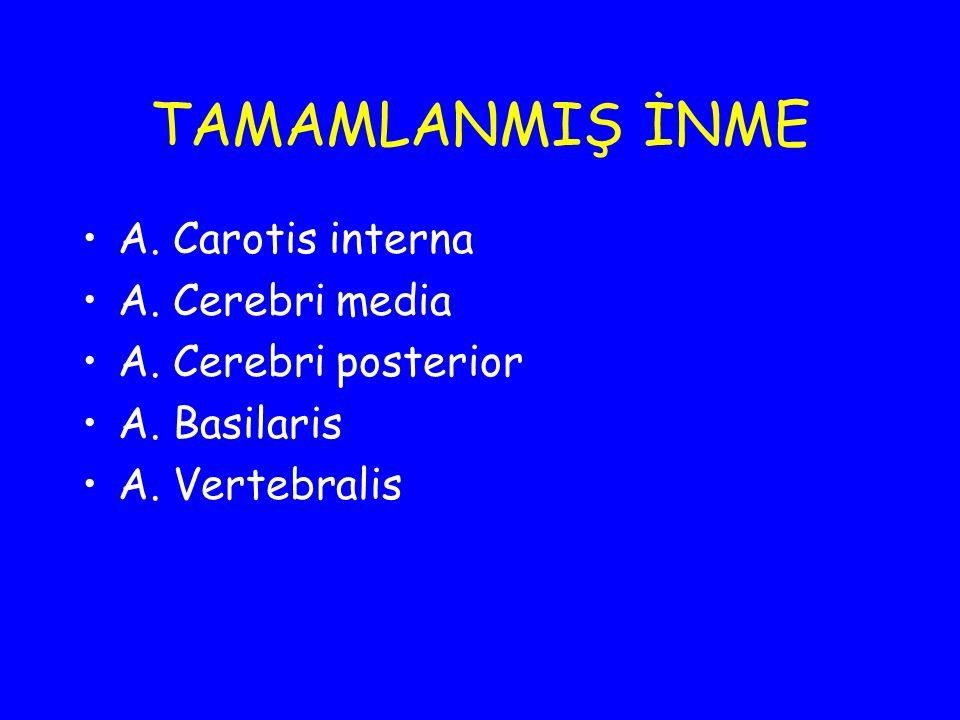 TAMAMLANMIŞ İNME A. Carotis interna A. Cerebri media A. Cerebri posterior A. Basilaris A. Vertebralis