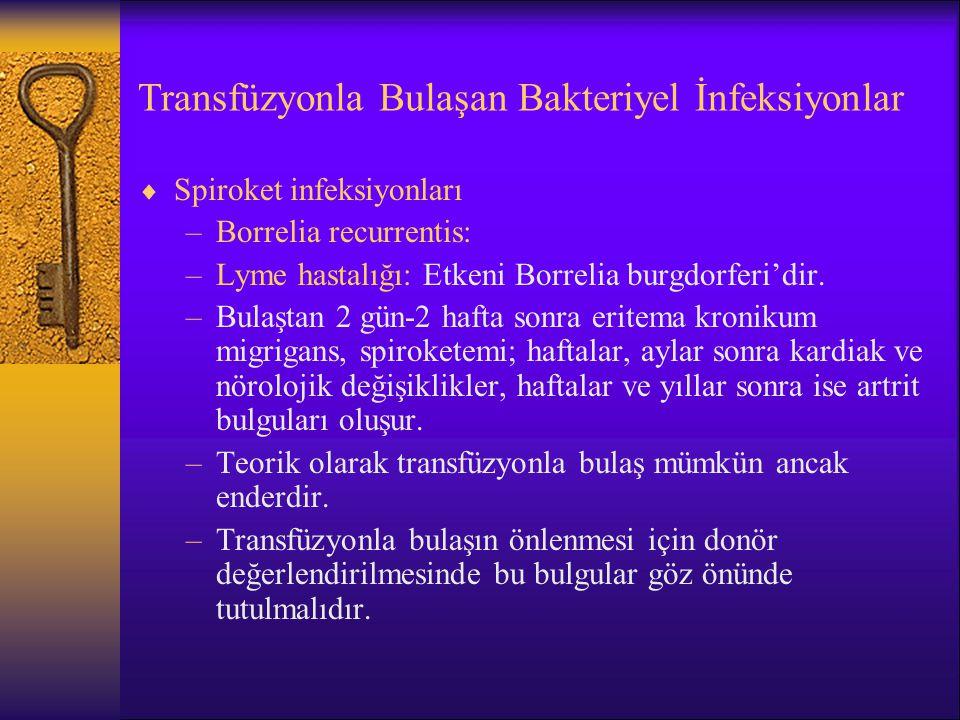 Transfüzyonla Bulaşan Bakteriyel İnfeksiyonlar  Spiroket infeksiyonları –Borrelia recurrentis: –Lyme hastalığı: Etkeni Borrelia burgdorferi'dir. –Bul