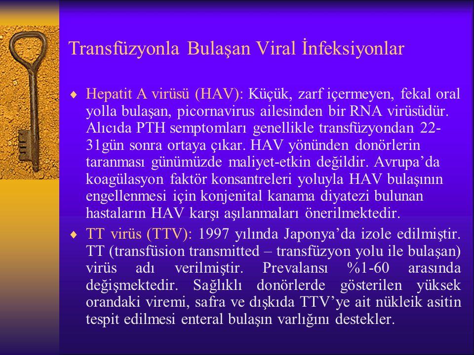 Transfüzyonla Bulaşan Viral İnfeksiyonlar  Hepatit A virüsü (HAV): Küçük, zarf içermeyen, fekal oral yolla bulaşan, picornavirus ailesinden bir RNA v