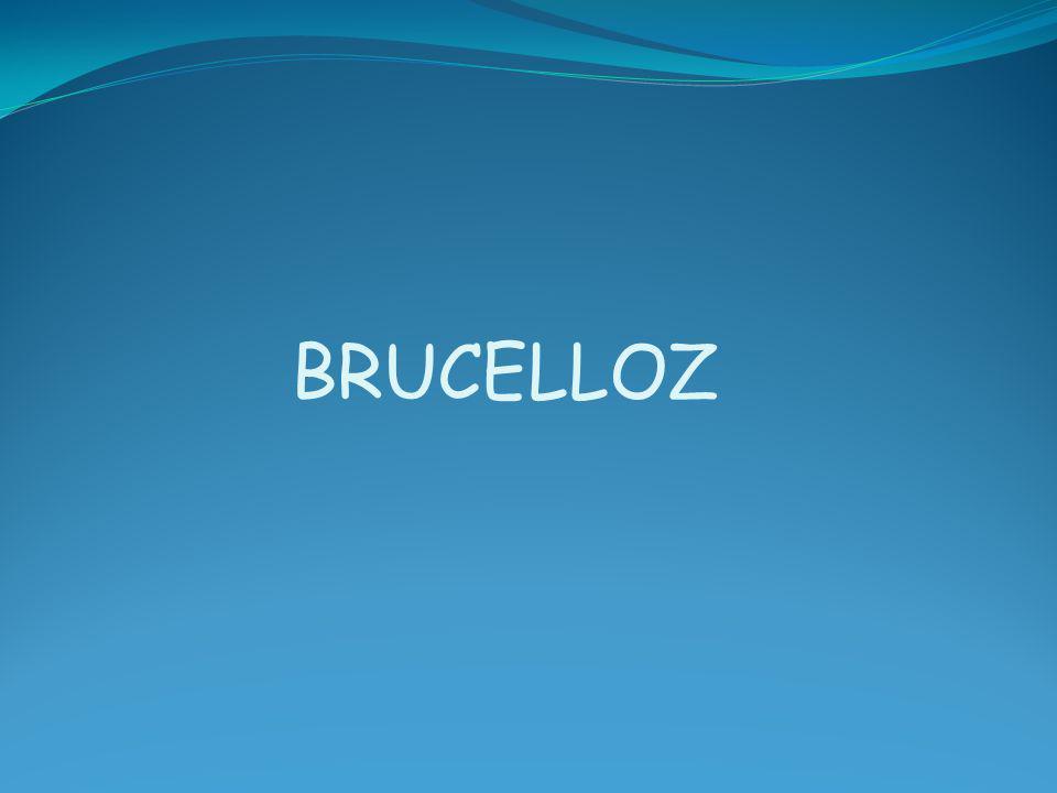 BRUCELLOZ