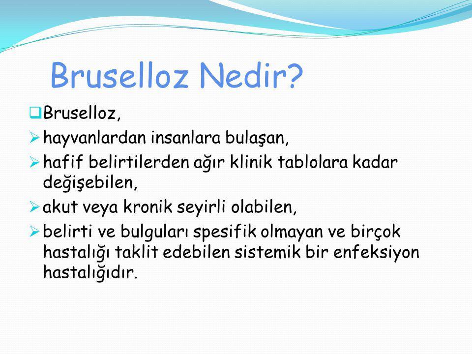 Bruselloz Nedir?  Bruselloz,  hayvanlardan insanlara bulaşan,  hafif belirtilerden ağır klinik tablolara kadar değişebilen,  akut veya kronik seyi