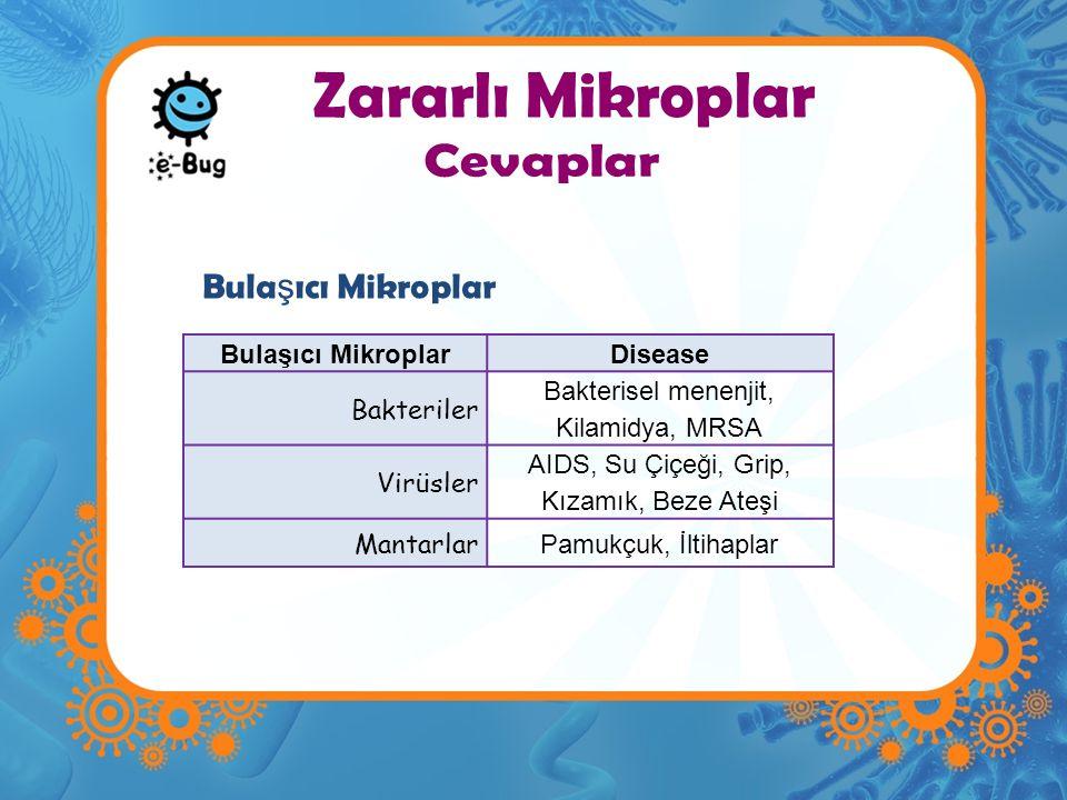 Zararlı Mikroplar Bulaşıcı MikroplarDisease Bakteriler Bakterisel menenjit, Kilamidya, MRSA Virüsler AIDS, Su Çiçeği, Grip, Kızamık, Beze Ateşi Mantar
