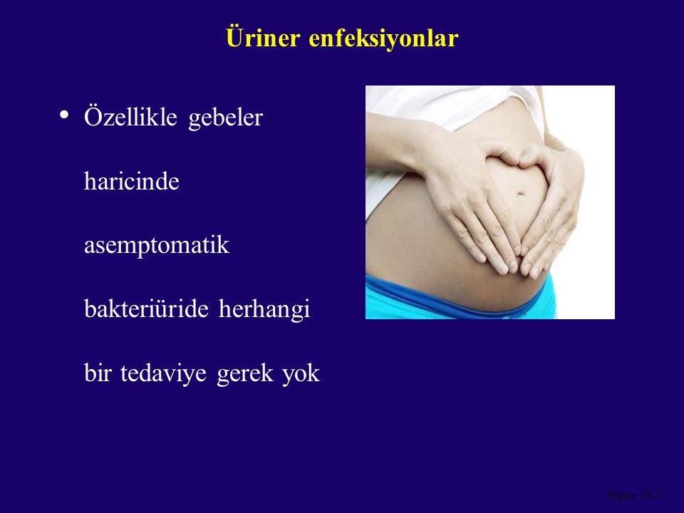 Figure 26.3 Üriner enfeksiyonlar Özellikle gebeler haricinde asemptomatik bakteriüride herhangi bir tedaviye gerek yok