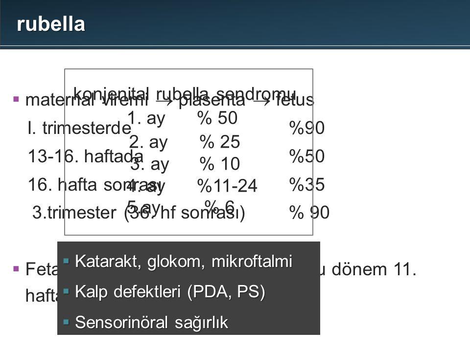 rubella  maternal viremi  plasenta  fetus I. trimesterde %90 13-16. haftada %50 16. hafta sonrası %35 3.trimester (36. hf sonrası)% 90  Fetal enfe