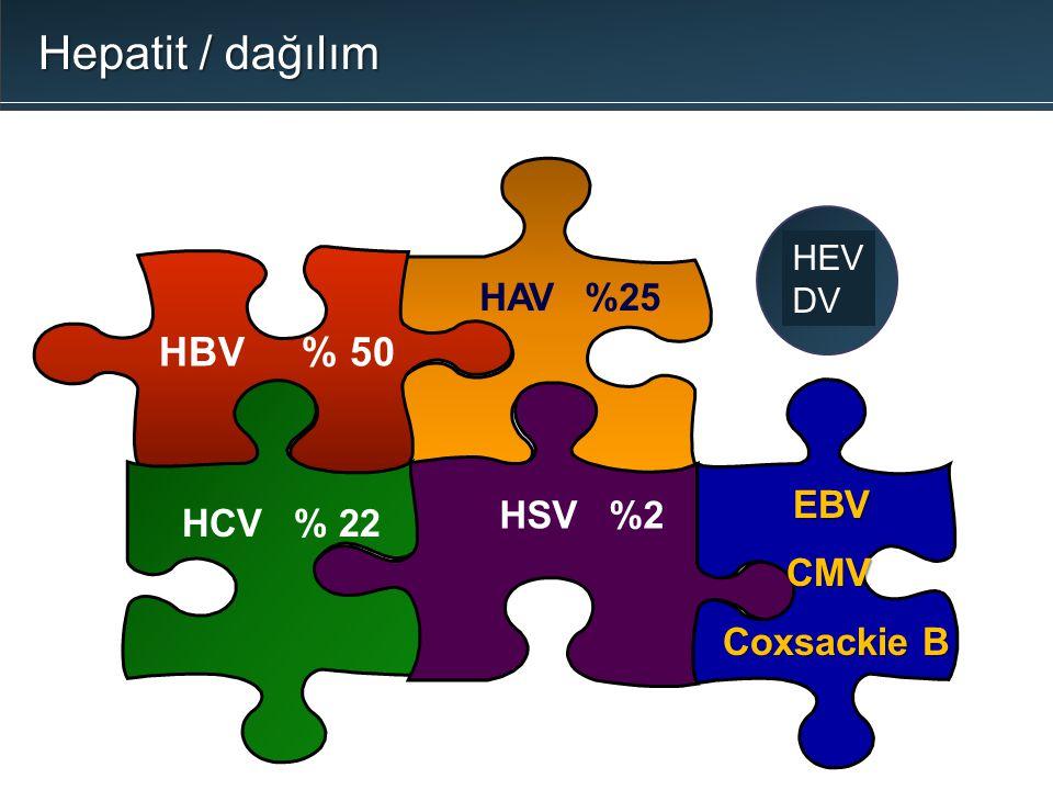 HBV % 50 HCV % 22 HSV %2 HAV%25 EBV CMV CMV Coxsackie B Coxsackie B HEV DV Hepatit / dağılım