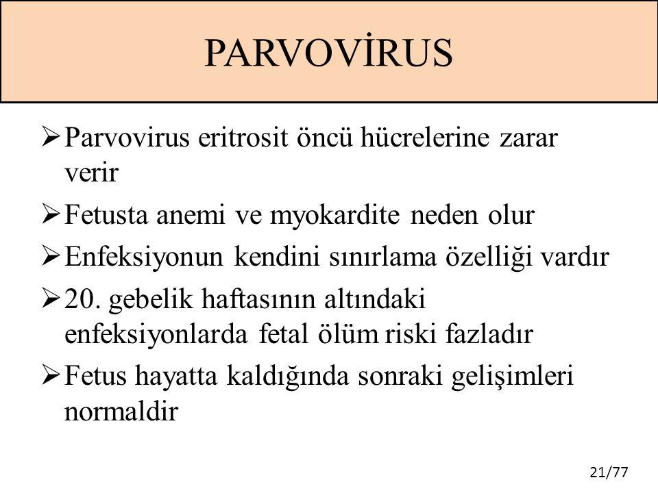 21/77 PARVOVİRUS  Parvovirus eritrosit öncü hücrelerine zarar verir  Fetusta anemi ve myokardite neden olur  Enfeksiyonun kendini sınırlama özelliğ
