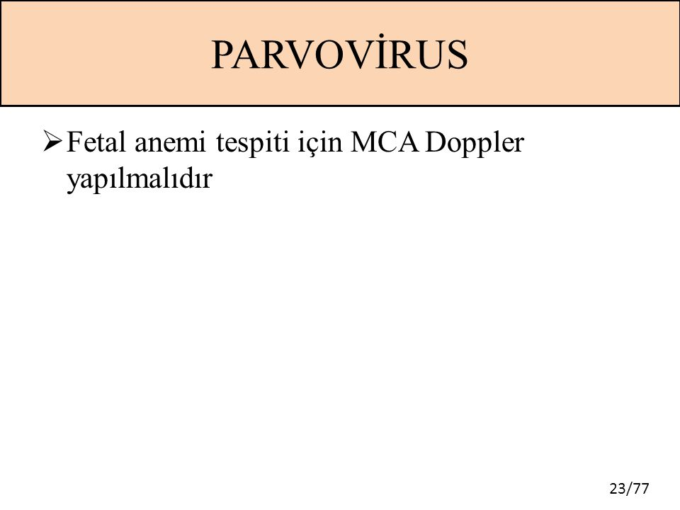 23/77 PARVOVİRUS  Fetal anemi tespiti için MCA Doppler yapılmalıdır