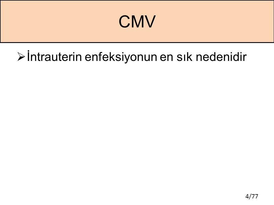 4/77 CMV  İntrauterin enfeksiyonun en sık nedenidir