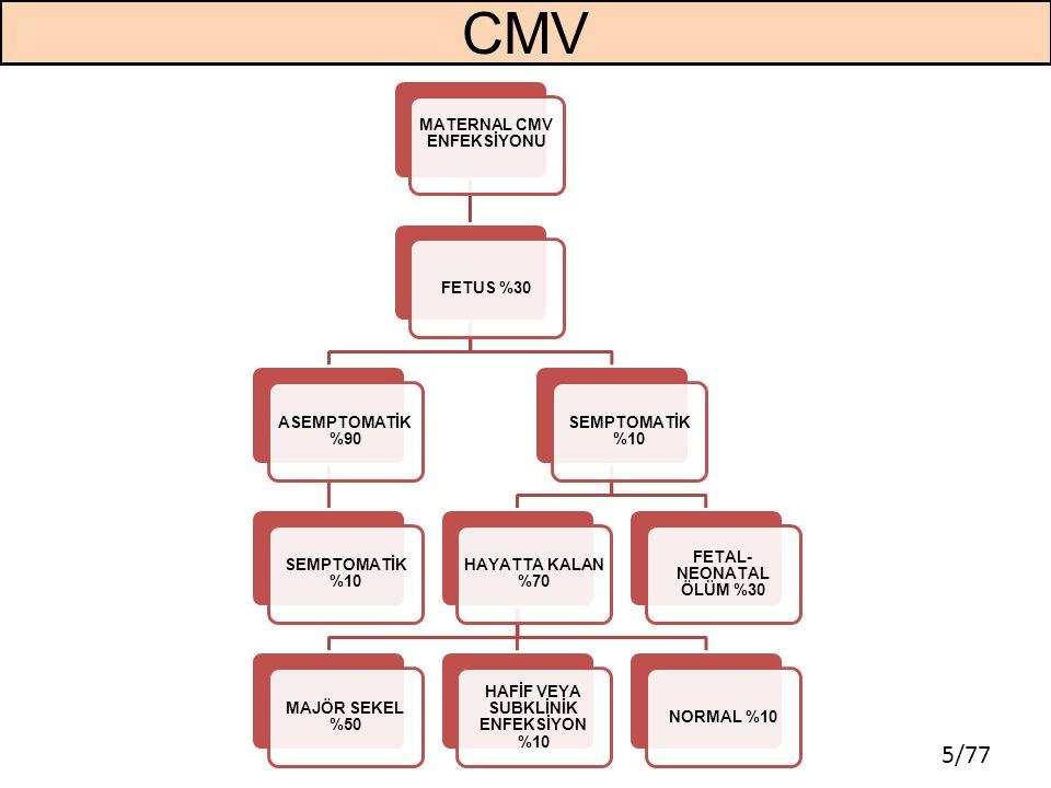 5/77 CMV MATERNAL CMV ENFEKSİYONU FETUS %30 ASEMPTOMATİK %90 SEMPTOMATİK %10 HAYATTA KALAN %70 MAJÖR SEKEL %50 HAFİF VEYA SUBKLİNİK ENFEKSİYON %10 NOR