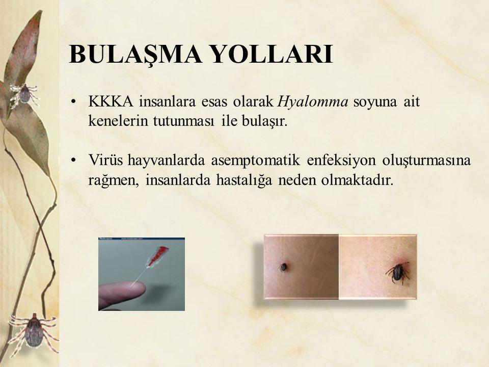 KORUNMA VE KONTROL 2- Hastanelerde alınması gereken önlemler: Kullanılan enjektör kapakları kapatılmamalı, delinmeyen kaplarda biriktirilmelidir.