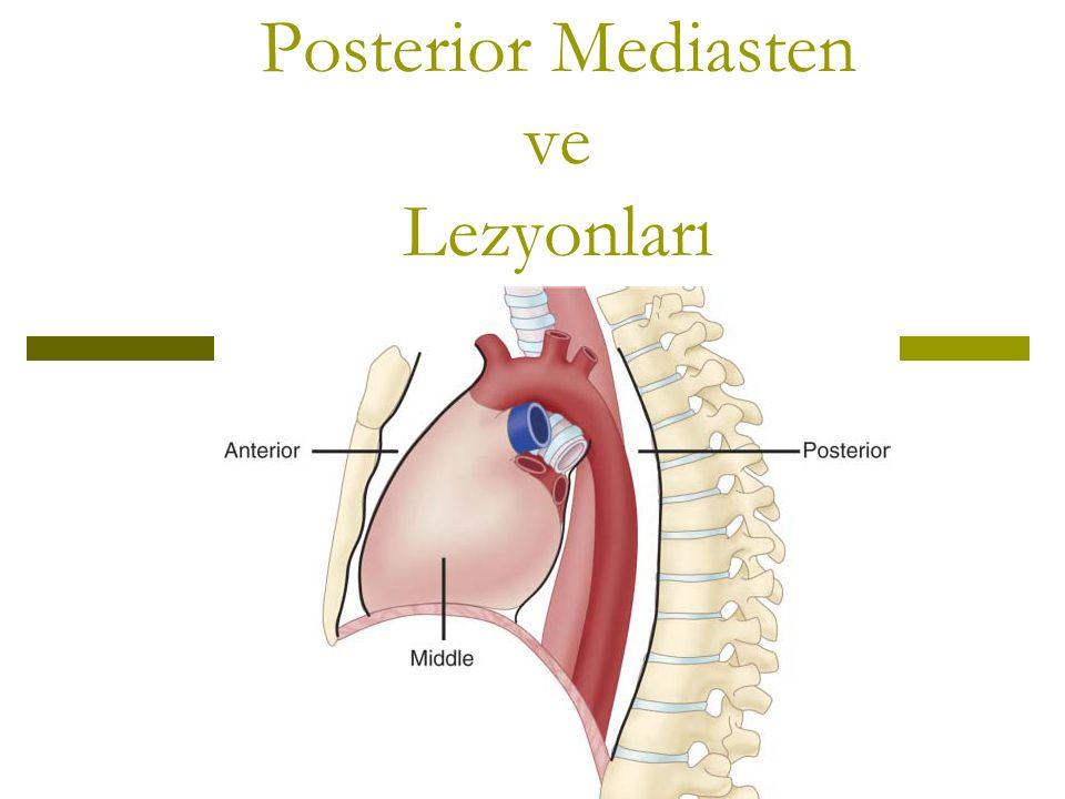  Posterior mediasten = Paravertebral sulcus Osefagus, İnen Aorta, Sempatik zincir, N.