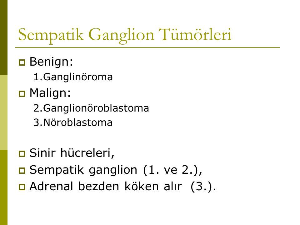 Sempatik Ganglion Tümörleri  Benign: 1.Ganglinöroma  Malign: 2.Ganglionöroblastoma 3.Nöroblastoma  Sinir hücreleri,  Sempatik ganglion (1. ve 2.),