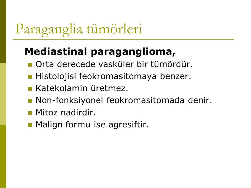 Mediastinal paraganglioma, Orta derecede vasküler bir tümördür. Histolojisi feokromasitomaya benzer. Katekolamin üretmez. Non-fonksiyonel feokromasito