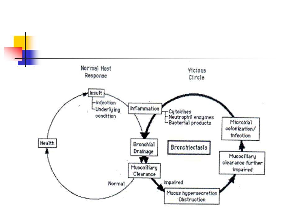Radyoloji PA Akciğer grafisi * Peribronşial fibrozis ve kalan sekresyonlara bağlı lineer işaretler (Tramvay yolu=ince paralel çizgiler) * Diş macunu=kalın paralel çizgiler * Bal peteği=ekmek içi Bronkoskopi (etyoloji, hemoptizinin yeri, aspirasyon) Bronkografi