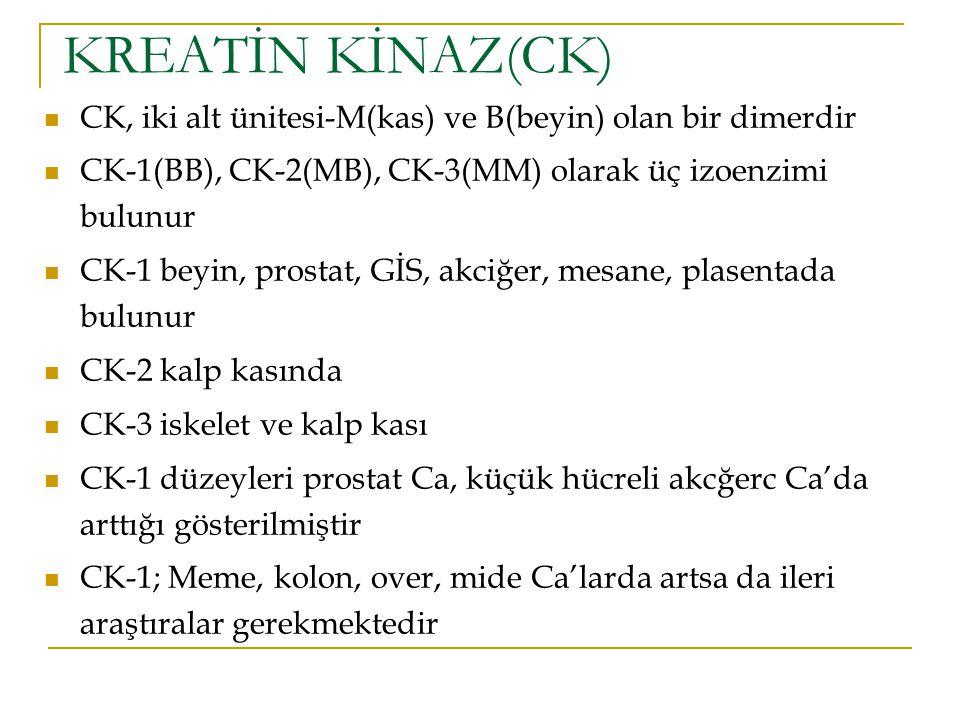 KREATİN KİNAZ(CK) CK, iki alt ünitesi-M(kas) ve B(beyin) olan bir dimerdir CK-1(BB), CK-2(MB), CK-3(MM) olarak üç izoenzimi bulunur CK-1 beyin, prosta