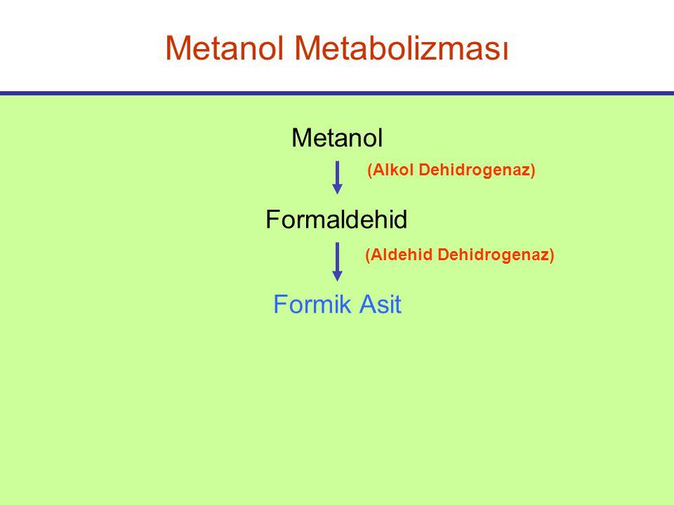 Metanol Metabolizması Metanol Formaldehid (Alkol Dehidrogenaz) (Aldehid Dehidrogenaz) Formik Asit