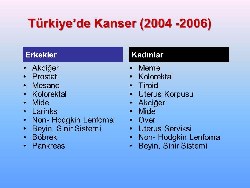 Türkiye'de Kanser (2004 -2006) Akciğer Prostat Mesane Kolorektal Mide Larinks Non- Hodgkin Lenfoma Beyin, Sinir Sistemi Böbrek Pankreas Meme Kolorekta