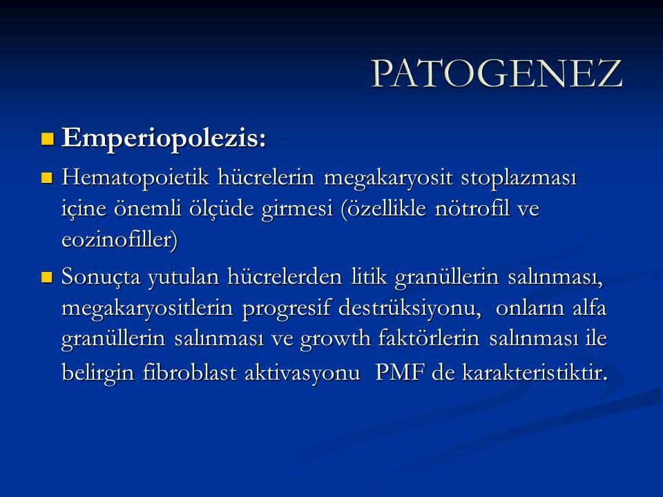 Emperiopolezis: Emperiopolezis: Hematopoietik hücrelerin megakaryosit stoplazması içine önemli ölçüde girmesi (özellikle nötrofil ve eozinofiller) Hem