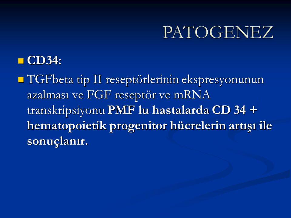 CD34: CD34: TGFbeta tip II reseptörlerinin ekspresyonunun azalması ve FGF reseptör ve mRNA transkripsiyonu PMF lu hastalarda CD 34 + hematopoietik pro