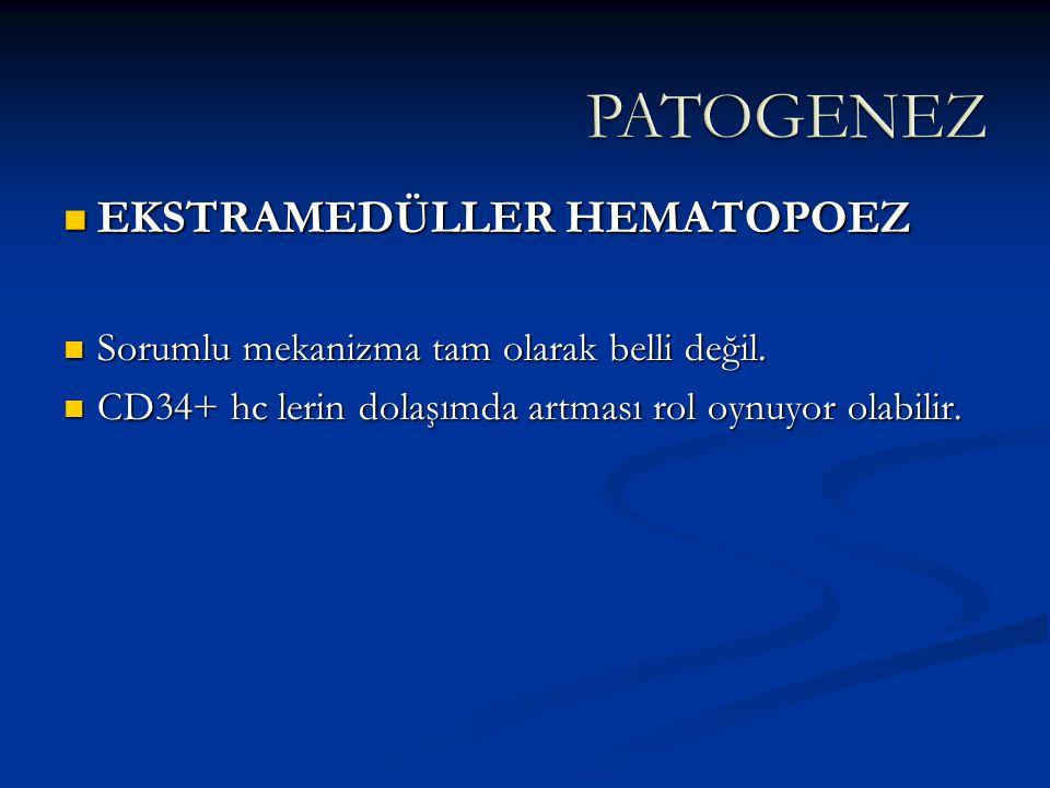 EKSTRAMEDÜLLER HEMATOPOEZ EKSTRAMEDÜLLER HEMATOPOEZ Sorumlu mekanizma tam olarak belli değil. Sorumlu mekanizma tam olarak belli değil. CD34+ hc lerin