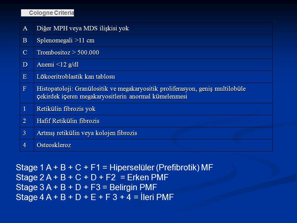 Cologne Criteria A Diğer MPH veya MDS ilişkisi yok B Splenomegali >11 cm C Trombositoz > 500.000 D Anemi <12 g/dl E L ö koeritroblastik kan tablosu F