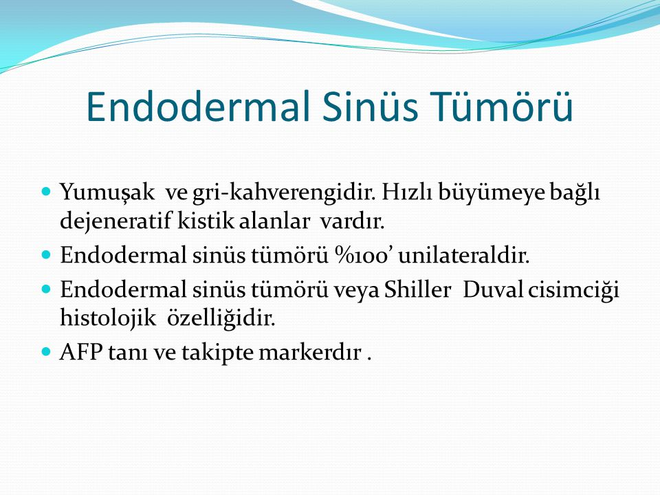 Endodermal Sinüs Tümörü Yumuşak ve gri-kahverengidir.