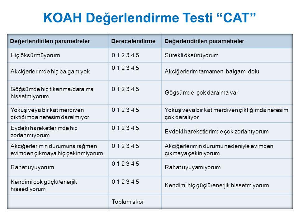 KOAH Değerlendirme Testi CAT