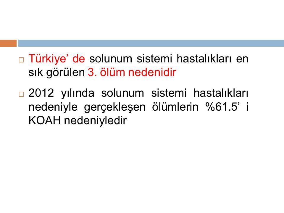  Türkiye' de solunum sistemi hastalıkları en sık görülen 3.