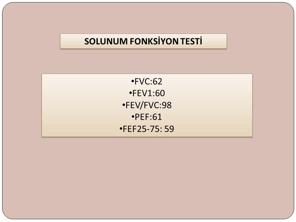 FVC:62 FEV1:60 FEV/FVC:98 PEF:61 FEF25-75: 59 FVC:62 FEV1:60 FEV/FVC:98 PEF:61 FEF25-75: 59 SOLUNUM FONKSİYON TESTİ