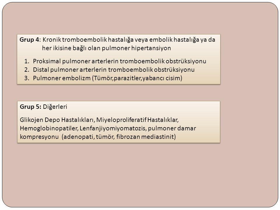 Grup 4: Kronik tromboembolik hastalığa veya embolik hastalığa ya da her ikisine bağlı olan pulmoner hipertansiyon 1. Proksimal pulmoner arterlerin tro