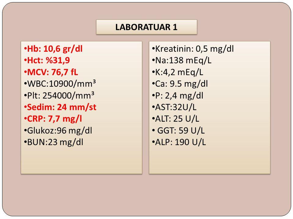 LABORATUAR 2 ANA (-) Anti ds DNA (-) LKM (-) Anti RNP (-) Anti SSB (-) Anti SSA (-) Scl 70 (-) Anti JO1 (-) Anti SM (-) ANA (-) Anti ds DNA (-) LKM (-) Anti RNP (-) Anti SSB (-) Anti SSA (-) Scl 70 (-) Anti JO1 (-) Anti SM (-) EKG Normal Sinüs Ritmi Sol aks Hız : 106/dk PR : 0,14 sn QTc : 0,39 sn İskemi düşündüren ST- T değişikliği yok P Pulmonale (+) Normal Sinüs Ritmi Sol aks Hız : 106/dk PR : 0,14 sn QTc : 0,39 sn İskemi düşündüren ST- T değişikliği yok P Pulmonale (+)
