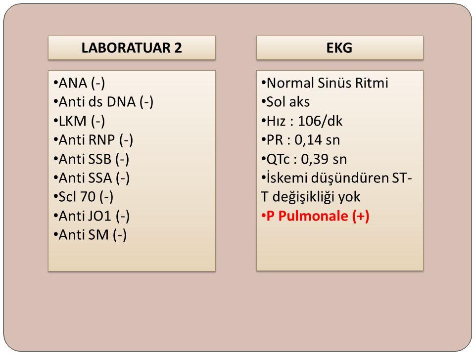 LABORATUAR 2 ANA (-) Anti ds DNA (-) LKM (-) Anti RNP (-) Anti SSB (-) Anti SSA (-) Scl 70 (-) Anti JO1 (-) Anti SM (-) ANA (-) Anti ds DNA (-) LKM (-